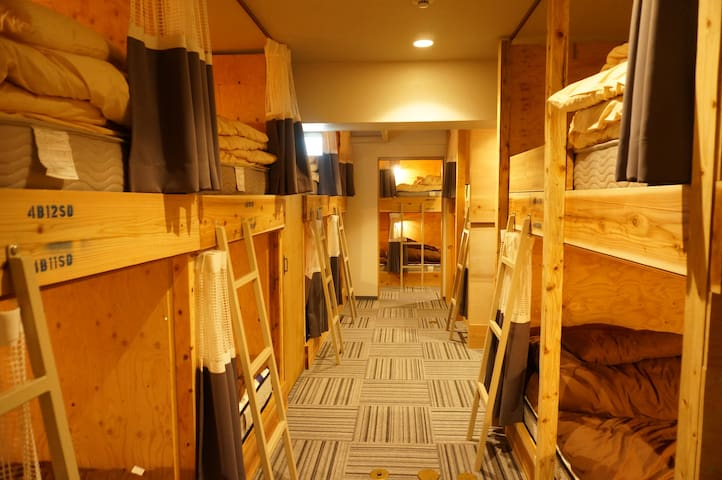 Dormitory (Single bed / the upper bunk)シングル(上段)
