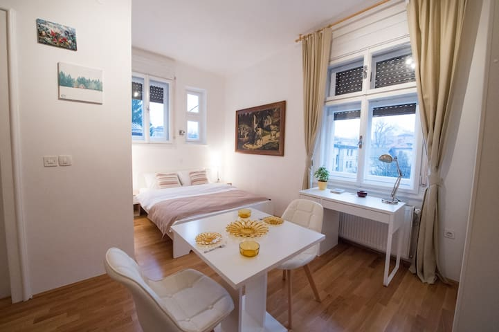 Bright studio near center + free parking - Ljubljana
