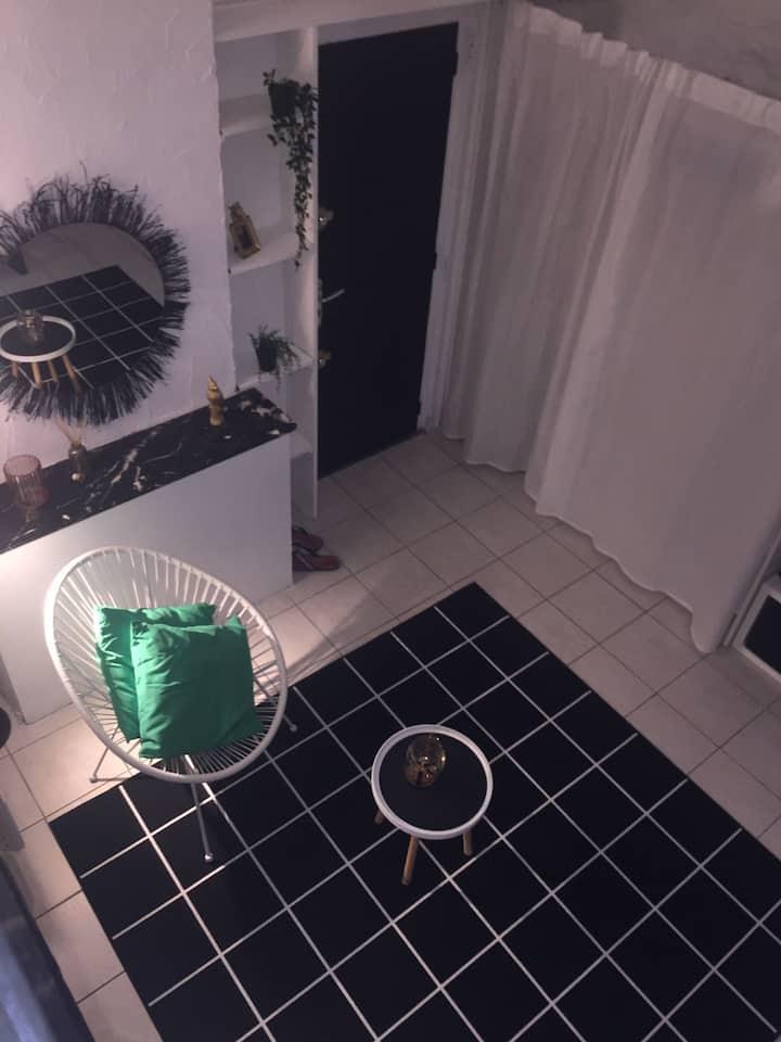 Appartement avec mezzanine à deux pas des Arènes