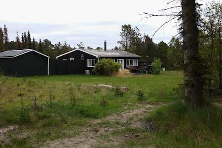 Cosy beach house -350 m to beach - Strandby