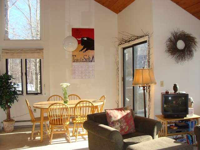 SUNNY UNIT, SLOPE VIEWS.  SEASONAL WEEKEND RENTAL.