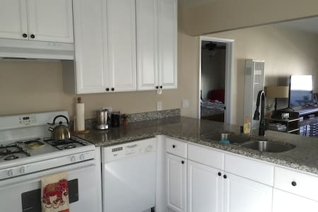 Bright, clean, modern 1 BR upstairs apartment 1 block from the beach. The apartment has a large granite kitchen, dining table, and sleeper sofa in the living room. Balcony/porch with ocean views and a grill.