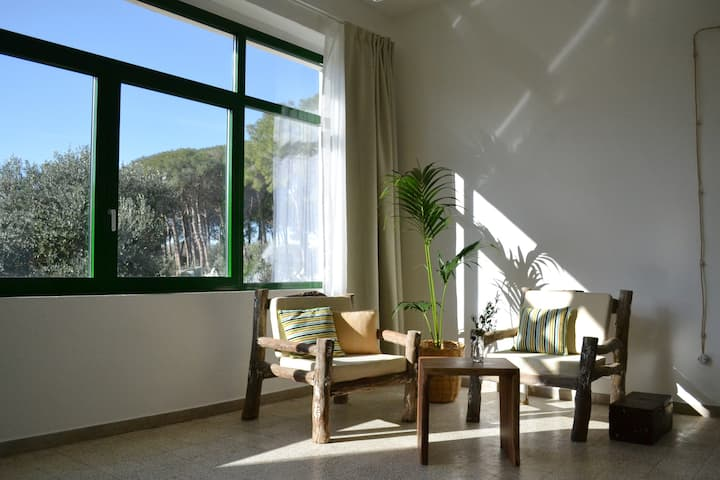 Casa Cantasole · Sunny cottage in the olive grove