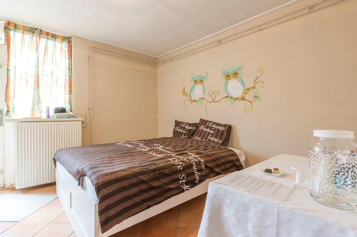 Nette kamer in rustige omgeving incl ontbijt (U) - Groninga - Bed & Breakfast