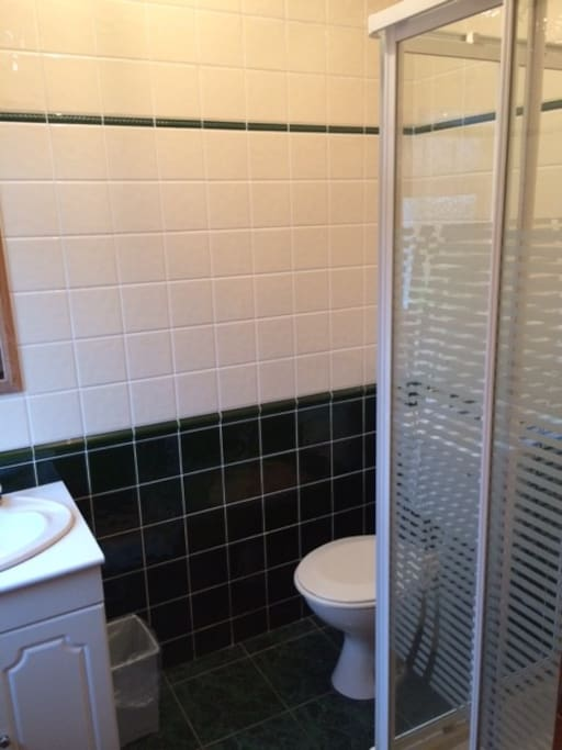 En-suite shower room with electric shower