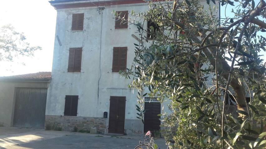 Casolare Zizza Capannori - Capannori - House