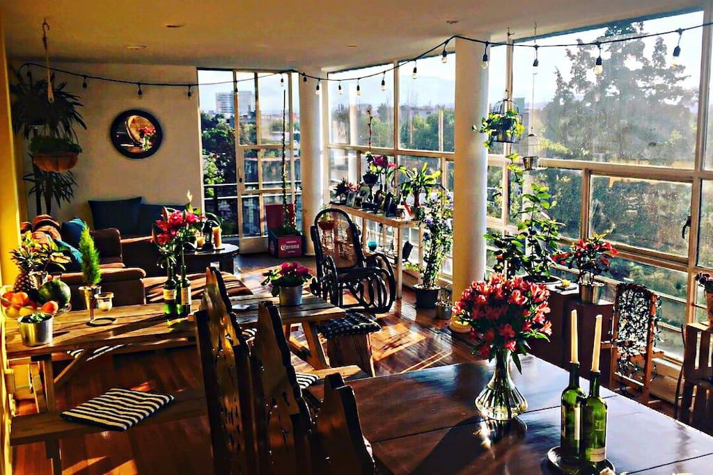 1 Pretty Room In Condesa Apartments For Rent In Ciudad