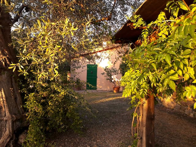 Casa nel parco sotto le antiche mura di Capalbio - Capalbio - Casa de campo