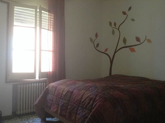 La habitación del árbol es un espacio para soñar