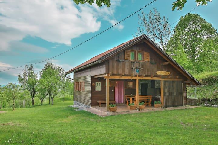 Kuća za odmor Tržan