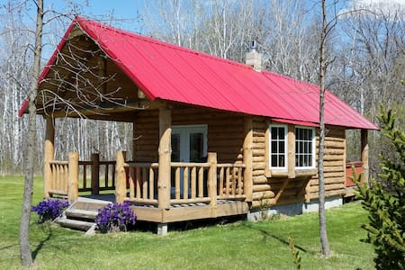 Bertha's Cabin in the great outdoors