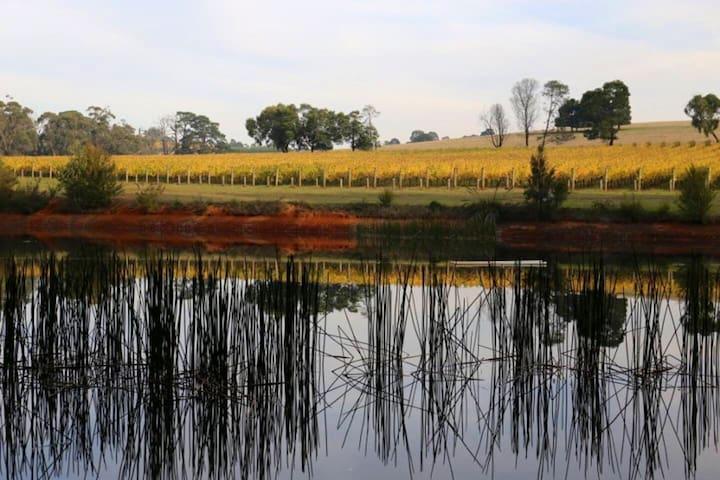 Lone Star Creek Vine Cottage - Peaceful Retreat