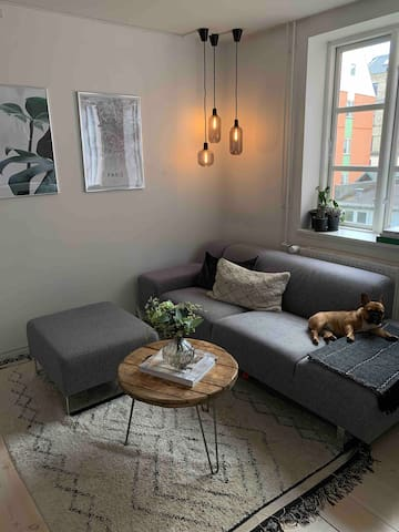 Authentic Copenhagen apartment