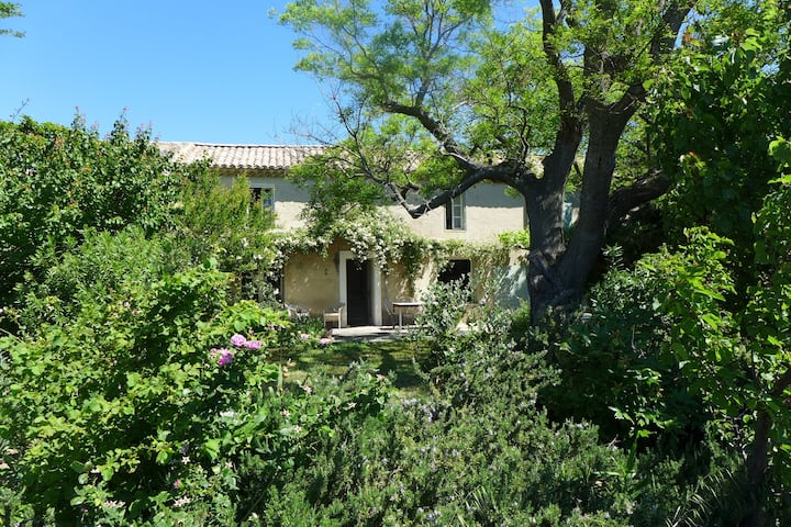 Wonderful quiet house and garden in the vines