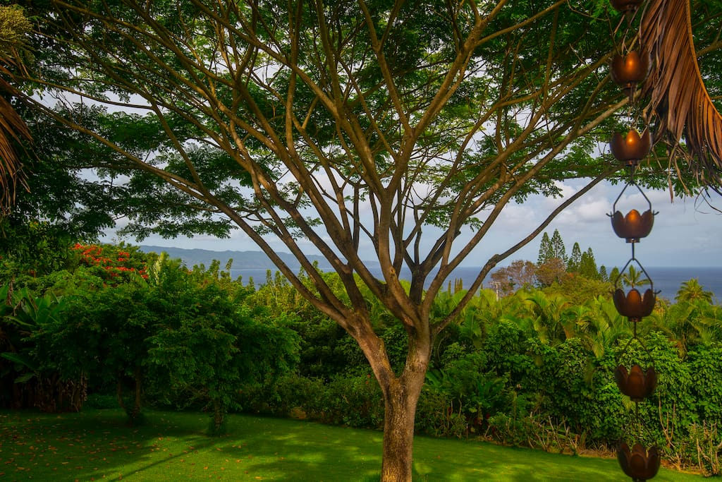 Lookout from lanai