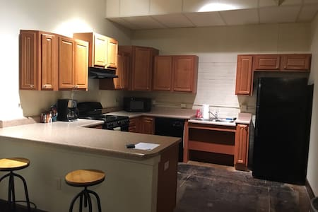 Large 1-bdrm apartment in Old Town w sleeper couch - Wichita - Huoneisto