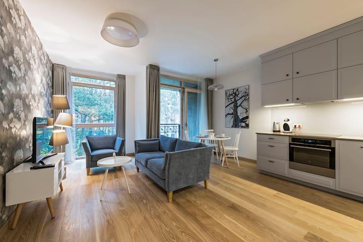 Winter Apartment (1 bedroom, 49 sq.m) - Druskininkai