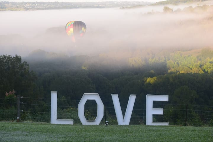 love seeing the balloons rise from the morning mist.