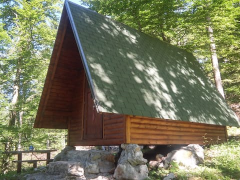 Poldi's glamping cabin on Mare's ranch