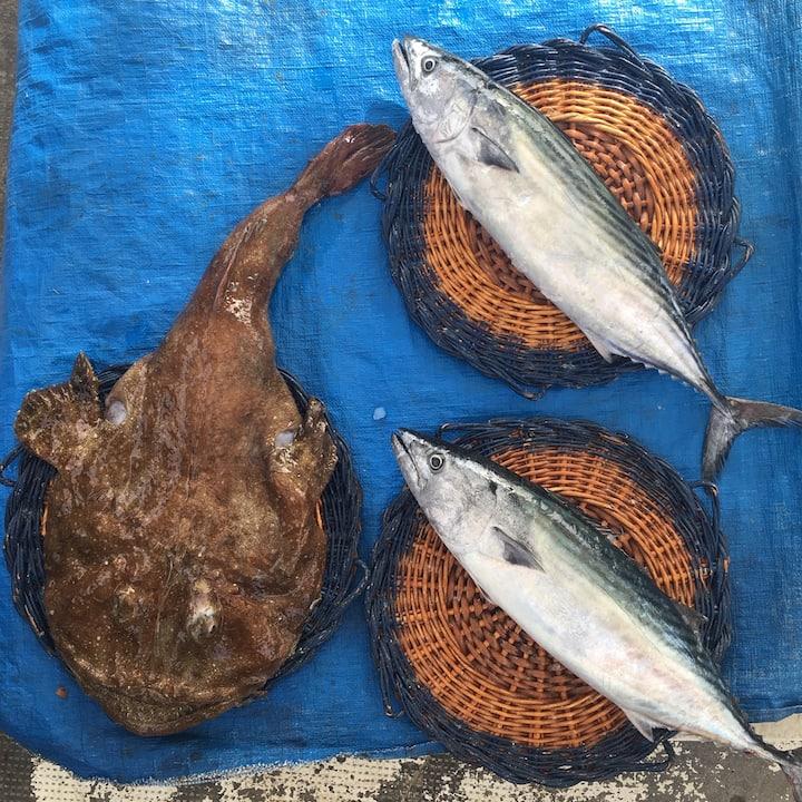 Fresh daily catch