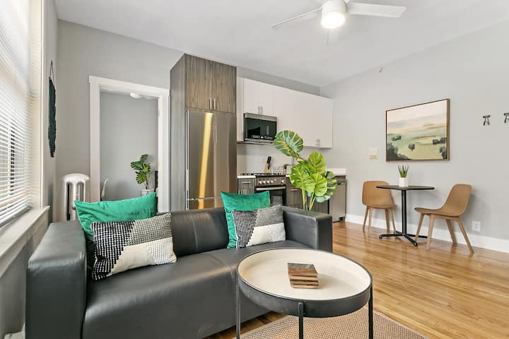 Contemporary Stylish 1BR Apt in Lakeview