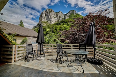 ⚡️🍀Relax in Transylvania at  Ramet Mansion - Alba🍀⚡️
