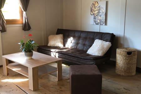 Frisch renovierte romantische Walliser Wohnung
