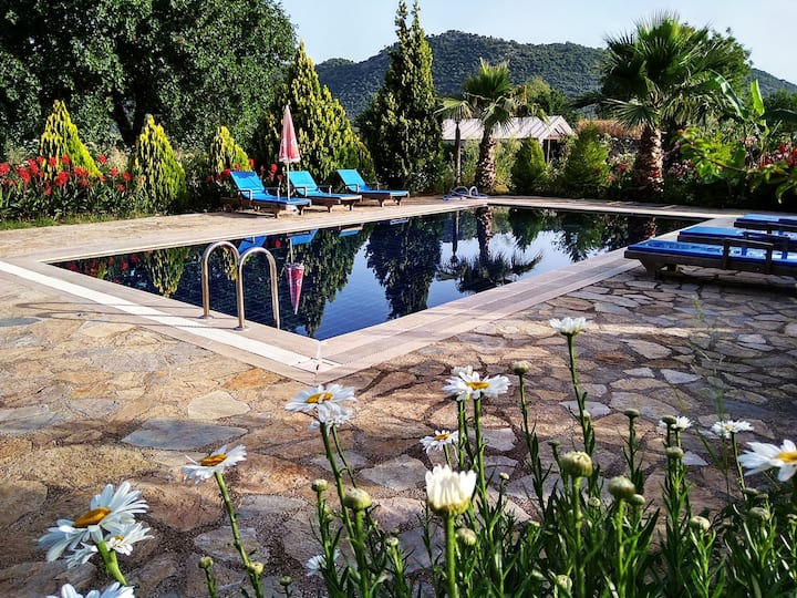 Beautiful natural stone house  big private pool