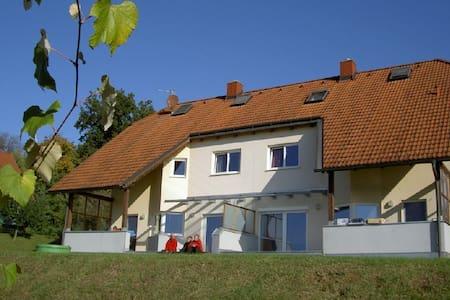 FERIENHAUS AM SCHLOSSHANG Haus A - Hohenbrugg an der Raab - Rumah