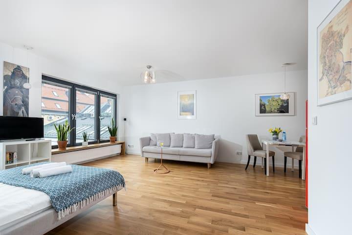 VIP Luxurious Apartment - A/C - Centrum Kazimierz