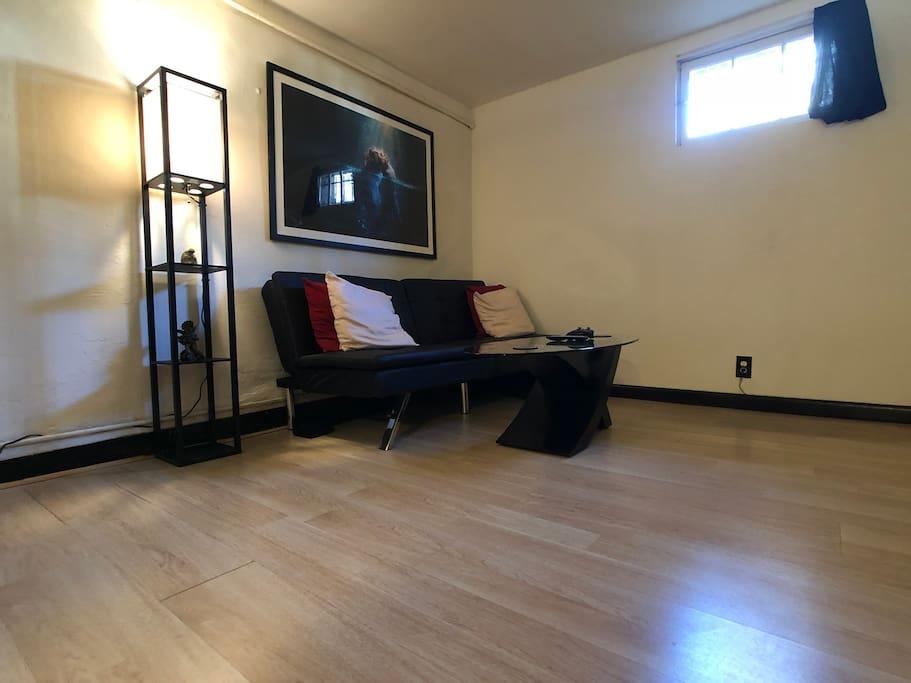 Mid sized, minimalistic living room space