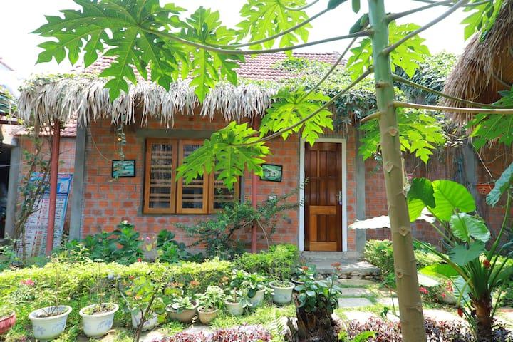 Green Riverside Cosy Home - Deluxe Single Room