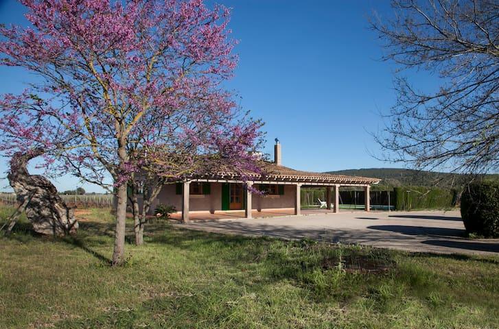Finca rural con piscina - Santa Maria del Camí - House