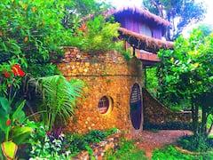 Sanctuaria+Treehouses