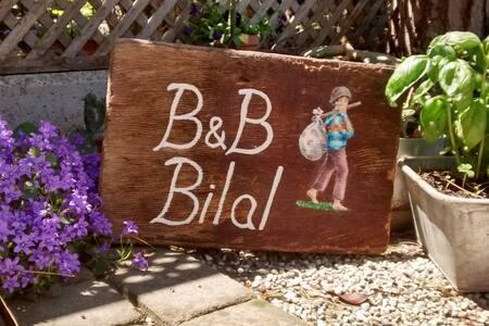 B6B BILAL 2