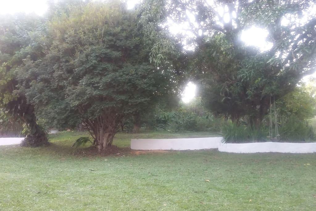 gramado lateral
