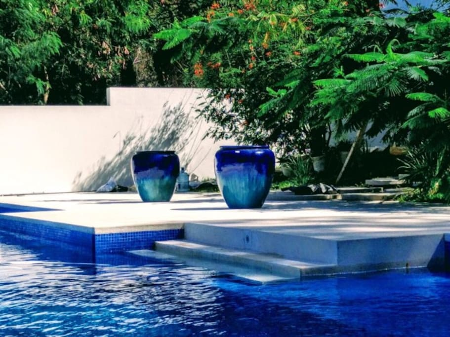 Swimming pool area and garden