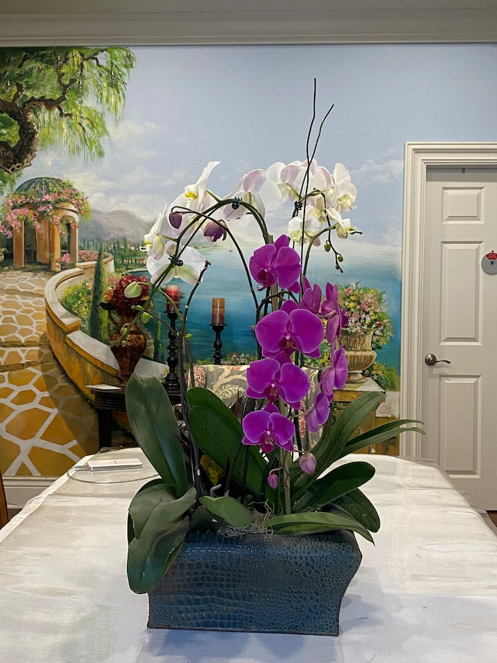 Orchid - New Bedroom with Private Bath