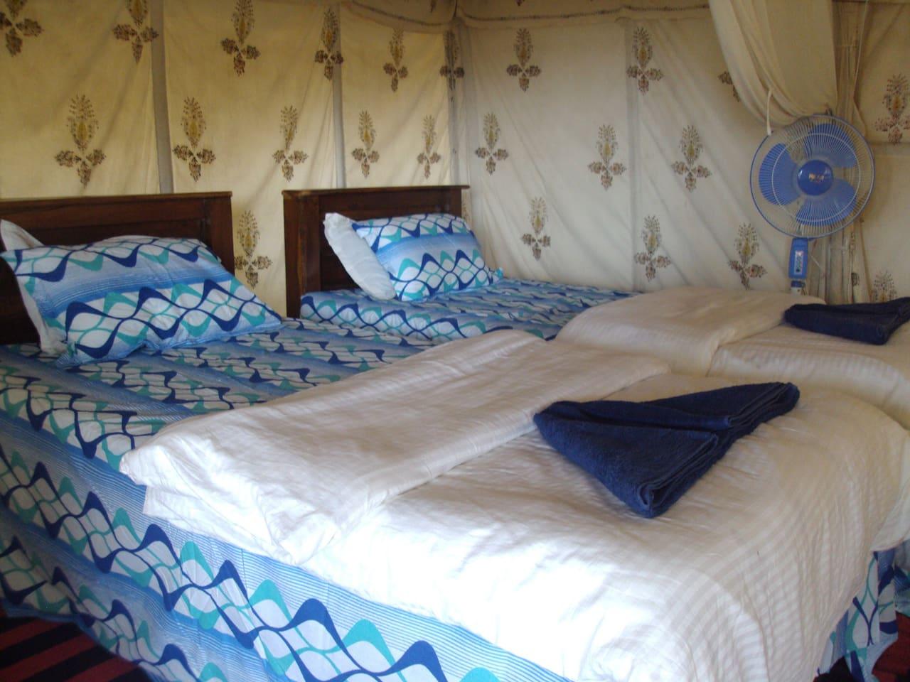Cola Beach Tents Bedroom