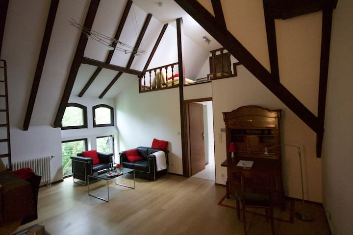 Loft mit Turmzimmer in Villa mit Park - Neuss - Villa