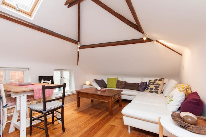 Harry Baskerville's Hay Barn - Ashburton - Apartamento