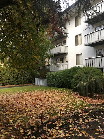 Beautiful Oak Bay Apartment near downtown Victoria
