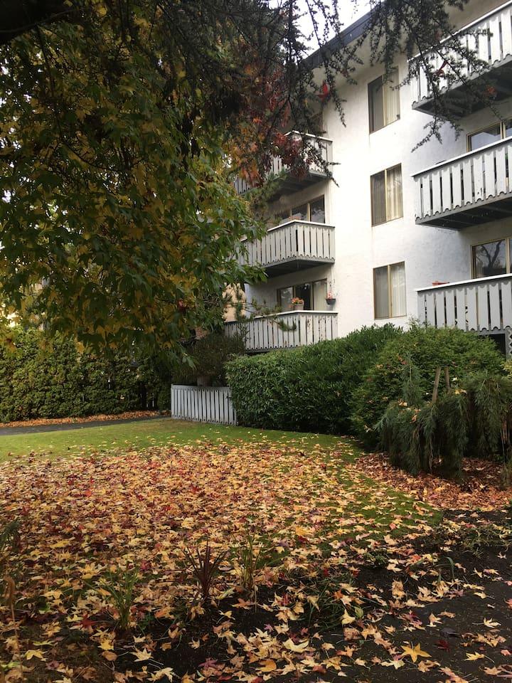 outside apartment ground floor level apt.