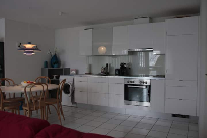 Large 1.5 room apartment in Basel
