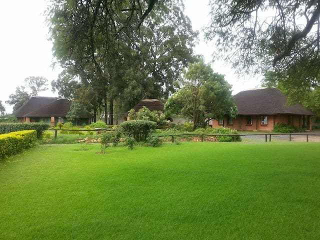 Eagles Nest Lodge - Gweru - Chalet