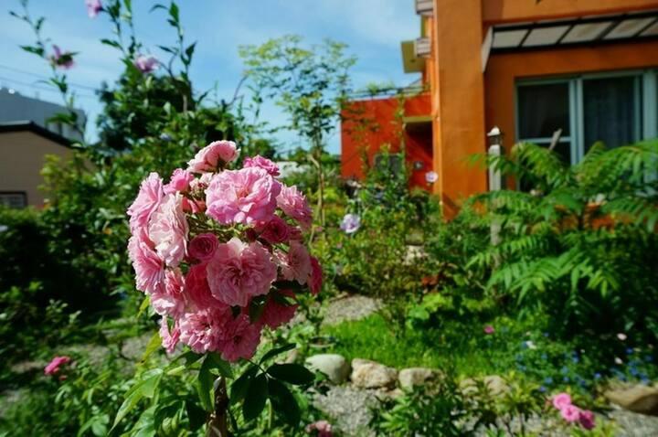 近台東鹿野車站,龍田山丘民宿203二人房,鹿野高台,盛夏蝴蝶圍繞戶外庭園
