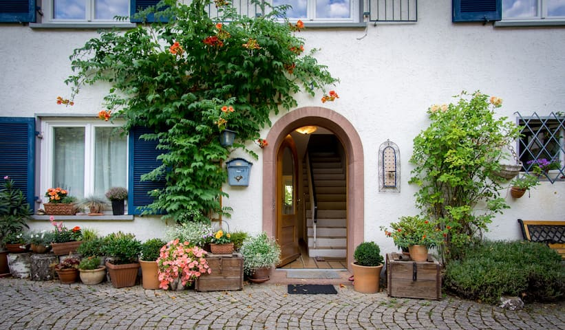Sunny location, outdoor terrace - Staufen im Breisgau - Apartmen
