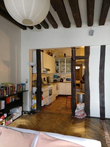 Appartement Paris 1er proche louvre. Salon 50m2.