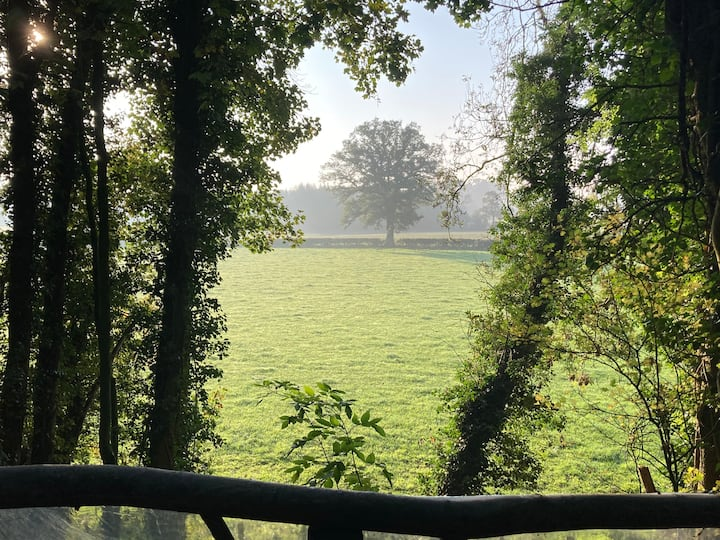 Embank Glamping Forest Retreat