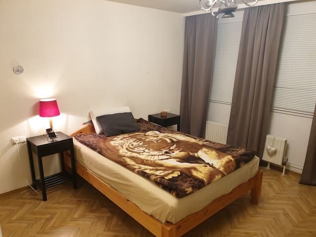 Cozy private room in Heilbronn city center & BuGa